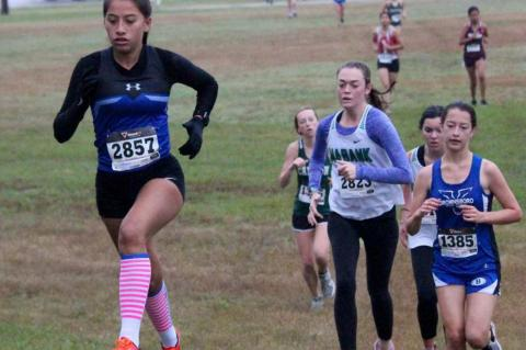 Three qualify for Regional Cross Country Meet