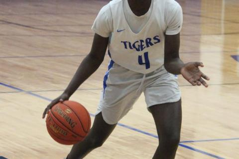 Tigers best Hornets, fall to Eagles
