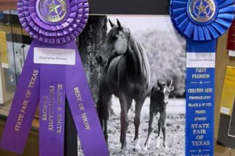 WPHS student wins big at State Fair