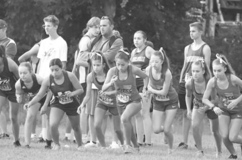 Tiger runners compete at Canton meet